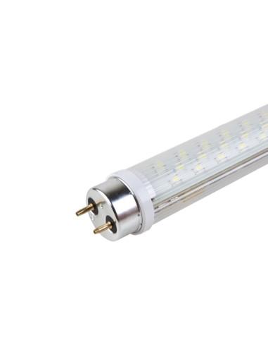 LED lempa T8 17W 3500K šilta balta, ilgis 1200mm ACME101564