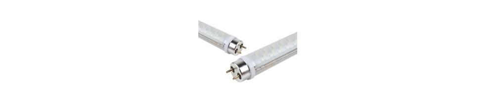 LED T8 lempos